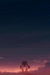1440x2560 Summer Sunset Walking Home 4k