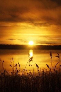 Sun Rushes Morning Sky