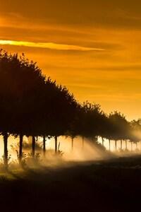 1080x2160 Sunbeam Fog Sunset