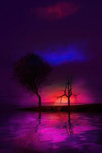 1080x2280 Sunset Tree 4k