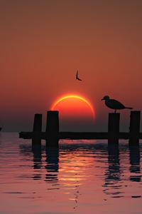 240x320 Sunset Vue 4k
