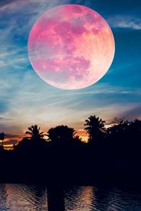 Super Blood Wolf Moon 5k
