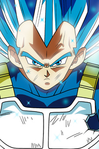 800x1280 Super Saiyan Blue Dragon Ball Super 5k