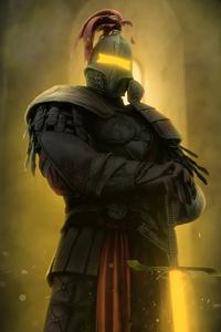 1080x2280 Sword Master