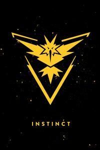 Team Instinct Dark Background
