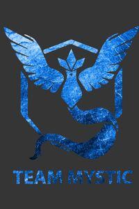 Team Mystic Pokemon GO Art