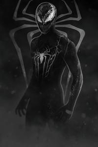 The Amazing Spider Man 3 VenomVerse 4k