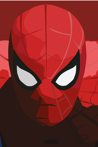 The Amazing Spiderman Illustration