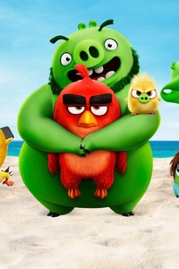 1080x2160 The Angry Birds Movie 2 2019 4k