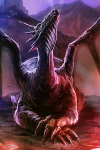 The Arogant Dragon