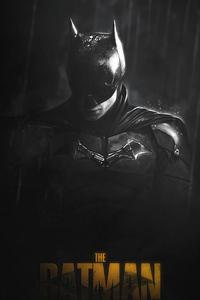 The Batman Monochrome