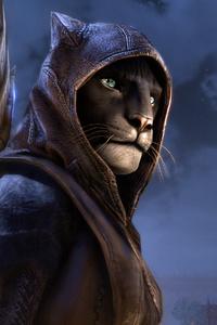 The Elder Scrolls Online Elsweyr 4k