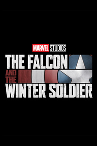 540x960 The Falcon And The Winter Solider 2020 Disney Plus