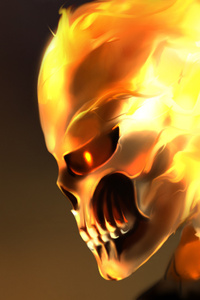 640x1136 The Ghost Rider