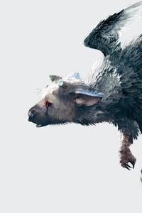 The Last Guardian Game Artwork