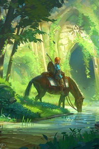 800x1280 The Legend Of Zelda Breath Of The Wild Fanart 4k