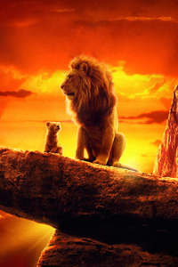 The Lion King 2019 4k Movie
