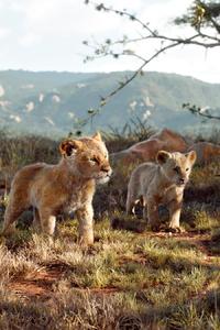 The Lion King Movie Still