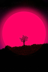 640x1136 The Lone Tree 5k