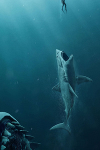 The Meg Movie 4k