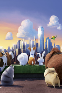 1440x2960 The Secret Life Of Pets 10k