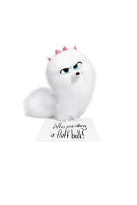 640x960 The Secret Life Of Pets Gidget 8k