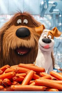 1440x2960 The Secrete Life of Pets Animated Movie