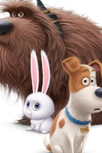 The Secrete Life of Pets Movie Dogs