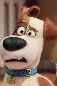 The Secrete Life of Pets Movie HD