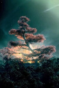 The Shannara Chronicles Tree