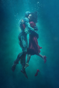 480x854 The Shape Of Water 8k
