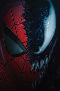 720x1280 The Spiderman X Venom 4k