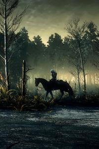 The Witcher 3 Wild Hunt 8k