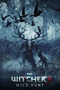 The Witcher 3 Wild Hunt Video Game