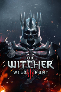 480x800 The Witcher Wild Hunt 4k