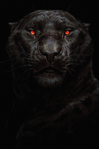 320x568 Tiger Glowing Eye 5k