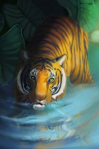 Tiger Lake