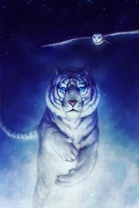 Tiger Owl 4k