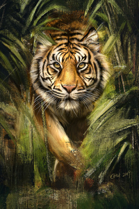 240x320 Tiger Painting Art