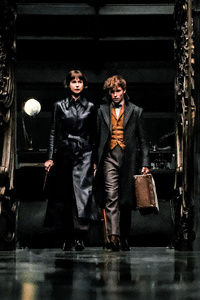 Tina Goldstein Eddie Redmayne In Fantastic Beasts The Crimes Of Grindlewald 2018