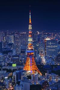 240x400 Tokyo Tower 4k