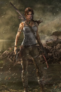320x480 Tomb Raider 5k