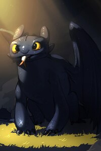 Toothless Amazing Art