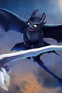Toothless And Light Fury Art 5k