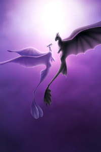Toothless And Light Fury Romantic Love