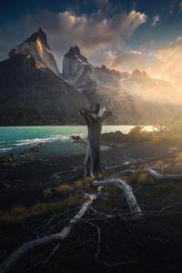 1080x2280 Torres Del Paine National Park 4k