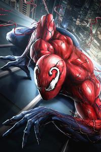 Toxic Spider