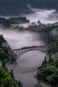 Train Going Over Bridge Surrounded By Trees And River