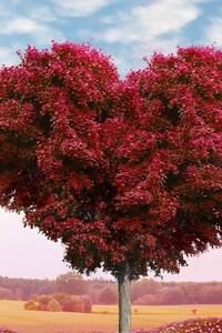 750x1334 Tree Heart