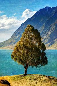 540x960 Tree Mountain Glacial Lake 4k